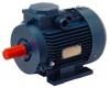 Електродвигуни за стандартами CENELEC